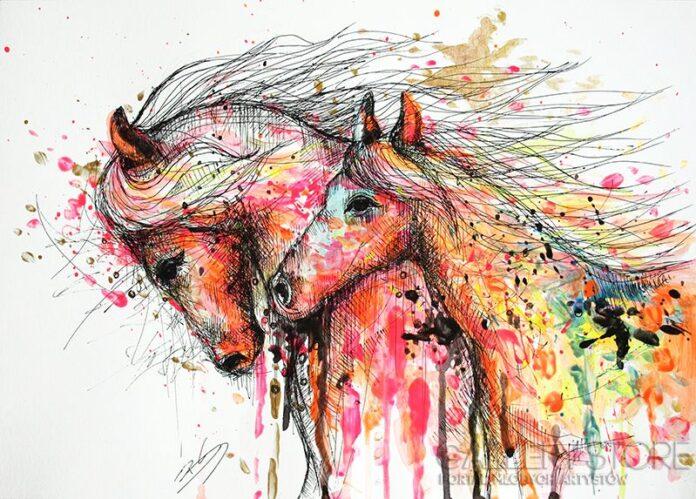 Barbara Soborak, konie