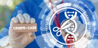 metoda CRISPR/Cas9