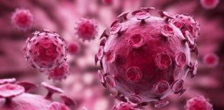 Wirusy chorobowe