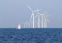 Morskie wiatraki