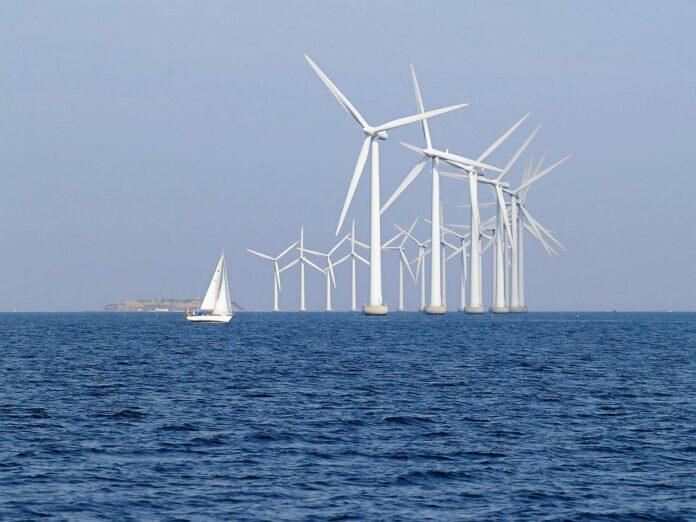 wiatraki morskie